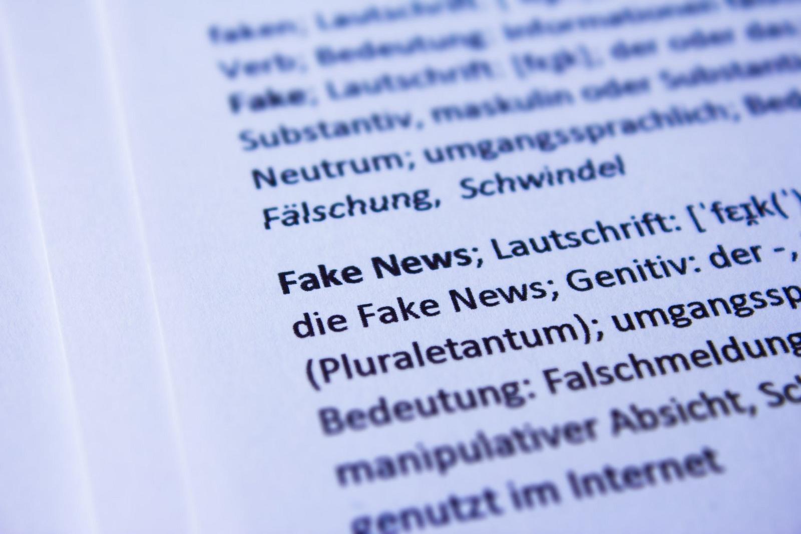 Page de dictionnaire Fakenews en allemand